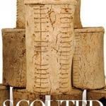 tsg-scouted-corkwood-hanging-lanterns.jpg