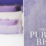 tsg-color-story-purple-reign.jpg